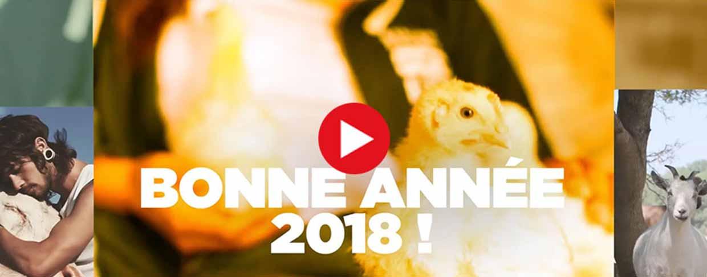 Vidéo de bonne année