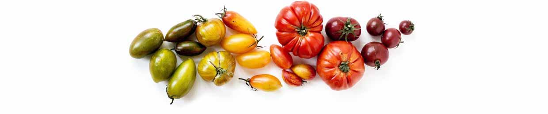 Nombreuses variétés de tomates