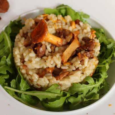 Recette risotto champignons